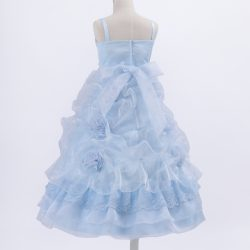 NHG81683_blue